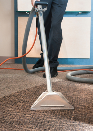 ORDER Carpet Cleaning Service | FREE Carpet Cleaning Quote | Carpet Cleaning Service in Los Angeles | Carpet Cleaning Service in Thousand Oaks | Carpet Cleaning Service in Simi Valley | Carpet Cleaning Service in San Fernando Valley | Carpet Cleaning Service in Santa Clarita Valley | Carpet Cleaning Service in Ventura | Carpet Cleaning Service in Beverly Hills | Carpet Cleaning Service in Malibu