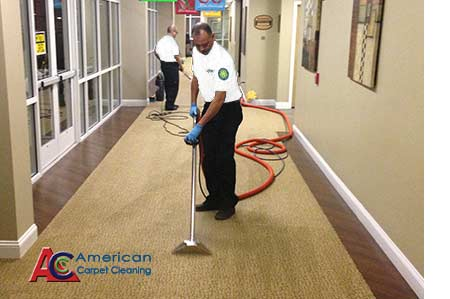 ORDER Carpet Cleaning Service in Valley Glen, CA | FREE Carpet Cleaning Quote in Valley Glen, CA | Carpet Cleaning Service in Valley Glen, CA | Carpet Cleaning in Valley Glen, CA | Valley Glen Carpet Cleaning | Carpet Cleaning Service in Thousand Oaks, CA | Carpet Cleaning Service in Simi Valley, CA | Carpet Cleaning Service in San Fernando Valley, CA | Carpet Cleaning Service in Santa Clarita Valley, CA | Carpet Cleaning Service in Ventura, CA | Carpet Cleaning Service in Beverly Hills | Carpet Cleaning Service in Malibu, CA