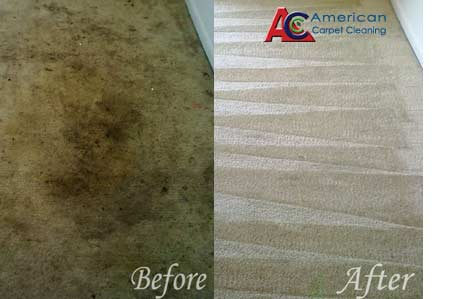 ORDER Carpet Cleaning Service, CA | FREE Carpet Cleaning Quote, CA | Carpet Cleaning Service in Valley Glen, CA | Carpet Cleaning in Valley Glen, CA | Valley Glen Carpet Cleaning | Carpet Cleaning Service in Thousand Oaks, CA | Carpet Cleaning Service in Simi Valley, CA | Carpet Cleaning Service in San Fernando Valley, CA | Carpet Cleaning Service in Santa Clarita Valley, CA | Carpet Cleaning Service in Ventura, CA | Carpet Cleaning Service in Beverly Hills | Carpet Cleaning Service in Malibu, CA